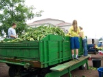 Corn Wagon @ Market