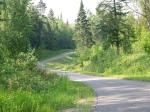 Curves through Chippewa Forest